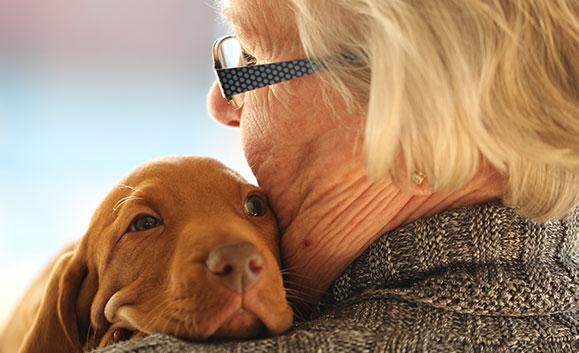 Saar aan Huis zorg voor huisdieren ouderen